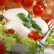 Italian mozzarella cheese — Stock Photo