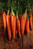 Bunch of fresh carrots — Foto Stock