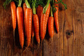 Bunch of fresh carrots — Zdjęcie stockowe