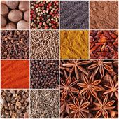 Collage of spices and herbs — Stock Photo