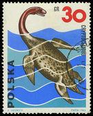 POLAND - CIRCA 1965: A stamp printed in Poland shows Cryptocleid — Foto de Stock