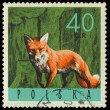 POLAND - CIRCA 1965: a stamp printed in the Poland shows Red Fox — Stock Photo
