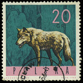 """POLAND - CIRCA 1965: A stamp printed in Poland from the """"Forest — Stock Photo"""
