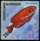 Republic of Burundi, - CIRCA 1975: A stamp printed by Burundi shows the fish Pilacanthus arenatus, circa 1975 — Stock Photo