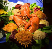 Red lobster on platter on serving table close-up — Stock Photo