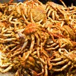 Fresh-caught crabs, photographed in fish market - Stock Photo