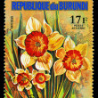 REPUBLIC OF BURUNDI - CIRC1974: stamp printed in Republic of — Stock Photo #28677909