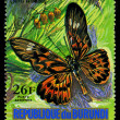 REPUBLIC OF BURUNDI - CIRC1974: stamp printed in Burundi shows butterfly DruryAntimacrus, series, circ1974 — Foto Stock #28992415