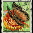 BURUNDI - CIRC1973: stamp printed in Burundi shows butterfly Cymothoe, circ1973 — Foto Stock #28992923