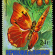 REPUBLIC OF BURUNDI - CIRC1974: stamp printed in Burundi shows butterfly CatopsiliAvelaneda, series, circ1974 — 图库照片 #28994145