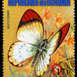 REPUBLIC OF BURUNDI - CIRC1974: stamp printed in Burundi shows butterfly Calotis Eupompe, series, circ1974 — Foto Stock #29005051