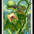 EQUATORIAL GUINE- CIRC1974: stamp printed in Equatorial Guineshows Catasetum Atratum, series is devoted to flowers, circ1974 — 图库照片 #29055369