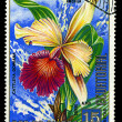 EQUATORIAL GUINE- CIRC1974: stamp printed in Equatorial Guineshows CattleyDowiana, series is devoted to flowers, circ1974 — 图库照片 #29055777