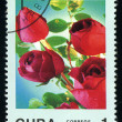 CUB- CIRC1988: post stamp printed in Cubdivided to Mother's Day and shows rose , circ1988 — 图库照片 #29055831