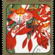 CUBA - CIRCA 1984: post stamp printed in Cuba shows image of amherstia nobilis from Caribbean flowers series, Scott catalog 2690 A730 20c, circa 1984 — Stock Photo