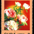 CUBA - CIRCA 1988: A post stamp printed in Cuba divided to Mother's Day and shows rose , circa 1988 — Stock Photo #29056327
