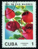Cuba - circa 1988: un sello de correos impreso en cuba dividida al día de la madre y muestra rosado, circa 1988 — Foto de Stock