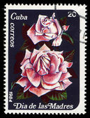 CUBA - CIRCA 1984: A post stamp printed in Cuba divided to Mother's Day and shows rose , circa 1984 — Stock Photo