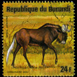 REPUBLIC OF BURUNDI - CIRC1975: stamp printed in Republic of Burundi shows white-tailed gnu, series, circ1975 — Stock Photo #29358881