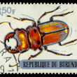 REPUBLIC OF BURUNDI - CIRCA 1970:printed in Republic of Burundi shows  shows beetle, circa 1970. — Stock Photo