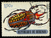 REPUBLIC OF BURUNDI - CIRCA 1970:printed in Republic of Burundi shows shows beetle, circa 1970. — Foto de Stock