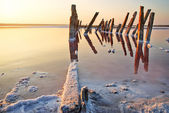 Sunset over the salt lake. All objects in this lake covered with salt. — Stock Photo