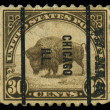 USA - CIRCA 1923: A stamp printed in the United States of America shows American buffalo, circa 1923 — Stock Photo #30258649