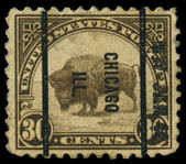 USA - CIRCA 1923: A stamp printed in the United States of America shows American buffalo, circa 1923 — Stock Photo