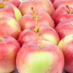 Fresh red apples closeup — Stock Photo #32429709