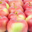 Fresh red apples closeup — Stock Photo