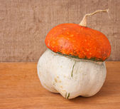 Decorative pumpkin (Cucurbita pepo) on a wooden table — Stock Photo