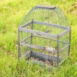 Cage for birds on a green  grass — Stock Photo