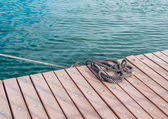 Coiled marine rope on wooden pier — Stock fotografie