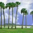 Stock Photo: AmeliIsland, Florida