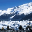 Glaciers in Argentina — Stock Photo #24024499