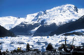Glaciers in Argentina — Stock Photo