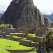 Stock Photo: Machu Picchu (Peru, Southa America)