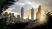 Skyscrapers of panama panorama — Stock Photo