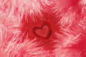 Heart shape in feathers — Stock Photo