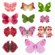 Постер, плакат: Rose butterfly collection