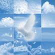 Pixelated white dove over cloud collages — Stock Photo