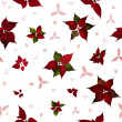 Seamless Poinsettia Christmas Flower — Stock Photo