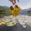 Stock Photo: Frog Tadpole Stages on Mountain Lake Leaf