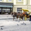 Stroller carriage with horses — Stock Photo