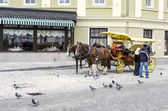 Stroller carriage with horses — 图库照片