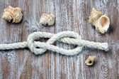 Marine rope tied knot Figure Eight — Stock Photo