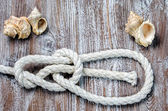 Marine rope tied knot Bowline — Stock Photo