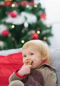 Happy baby eating cookie near Christmas tree — Stock Photo