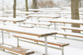 Snowed benches in winter park — Stock Photo