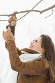 Happy young woman hanging bird feeder on tree in winter park — Foto Stock